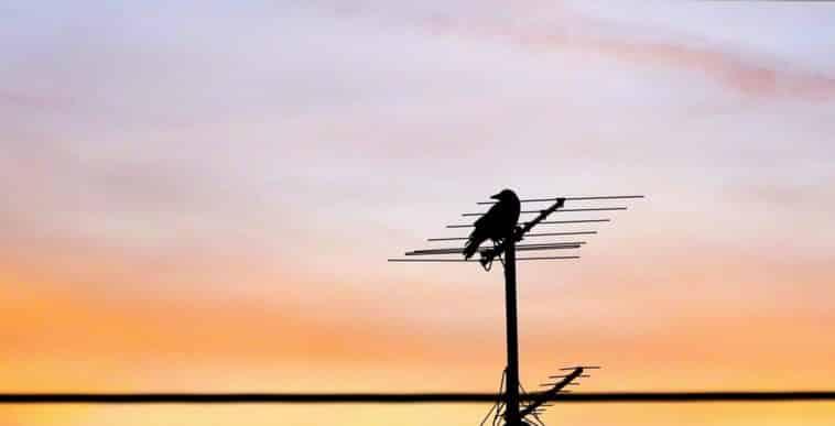 migliore-antenna-digitale-terrestre